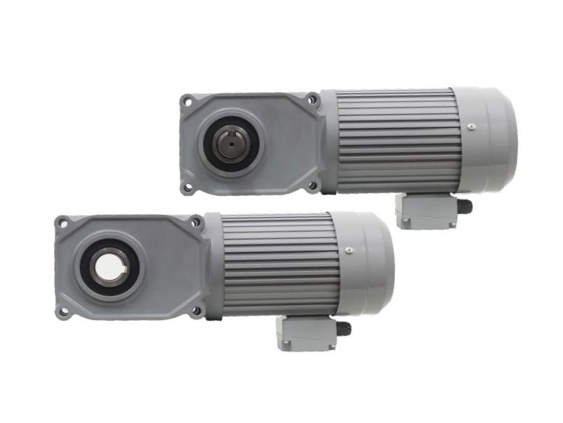F3 series-2.2kW gear reduction motor