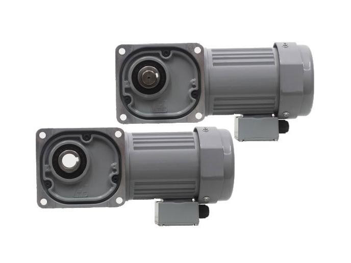 F series-0.2kW gear reduction motor
