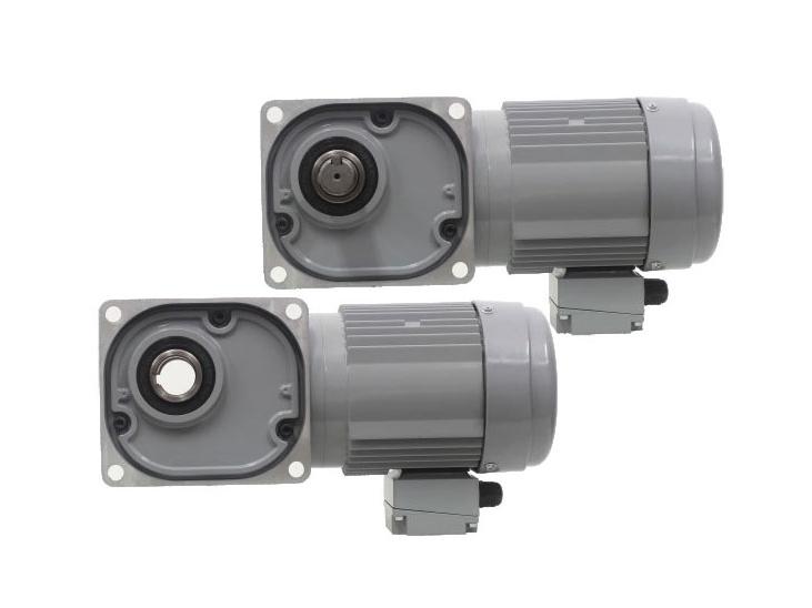 F series-0.75kW gear reduction motor