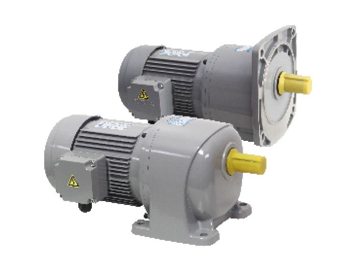 G3/G4 series-1.1kW gear reduction motor