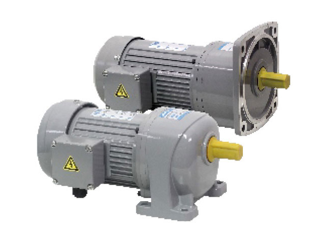 G3/G4 series-0.2kW gear reduction motor