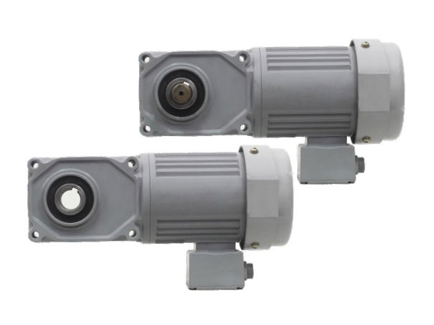 F3 series-0.4kW gear reduction motor