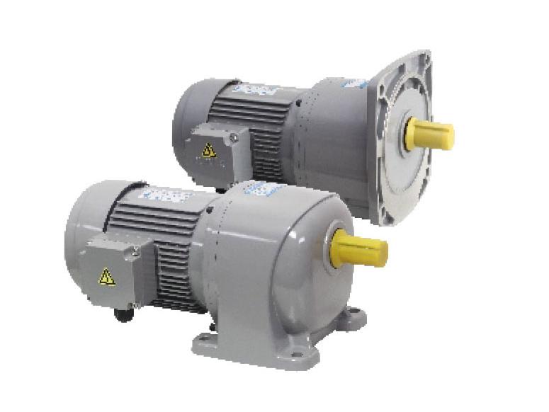 G3/G4 series-0.75kW gear reduction motor