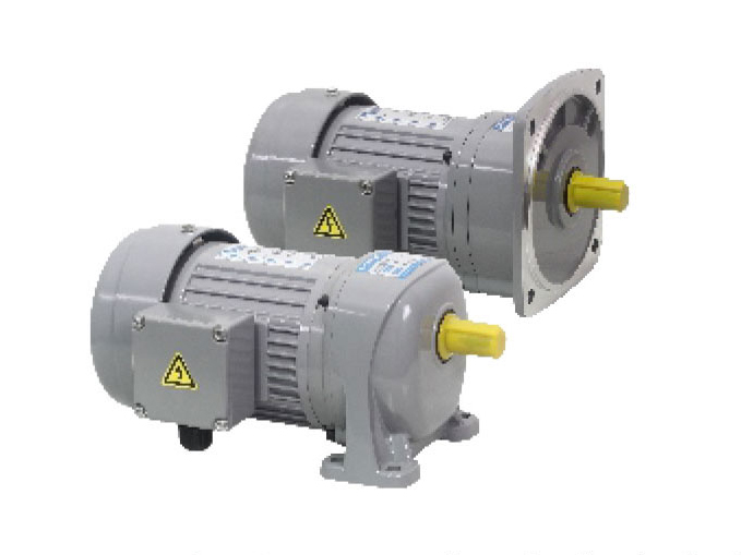 G3/G4 series-0.1kW gear reduction motor